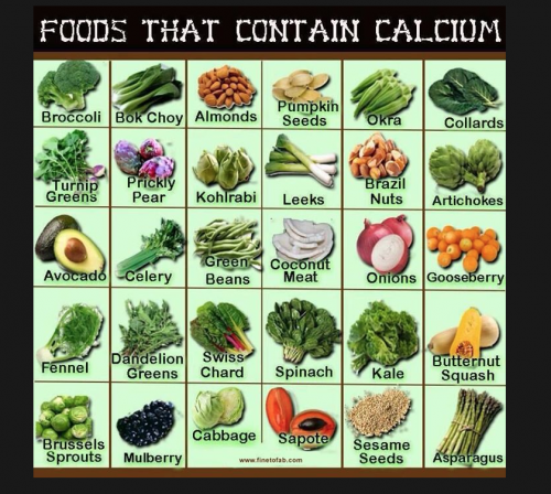 What Foods Are High In Calcium And Iron